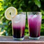 Butterfly Pea Flower Lemonade | Rainbowl Foods